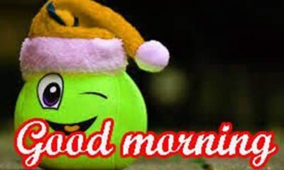 funny good morning wishes with images