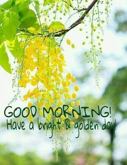 good morning greetings cute ways to say good morning to him