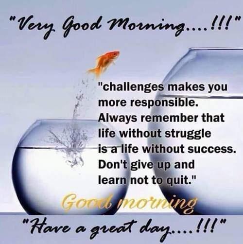 good morning greetings good morning greetings friday