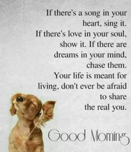 good morning greetings good morning status