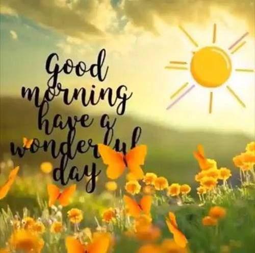 good morning greetings why to wish good morning