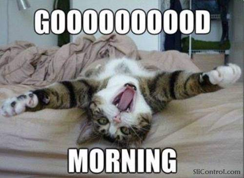good morning inspire