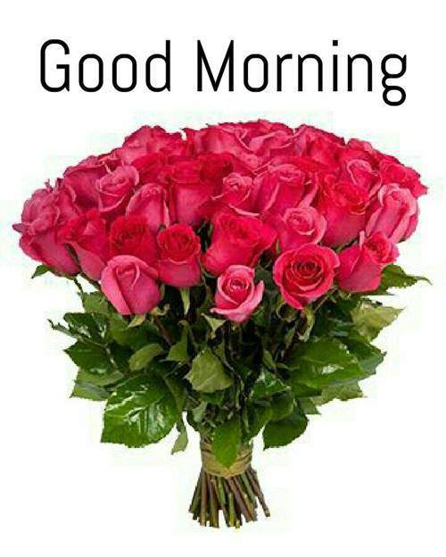 lovely good morning wishes with flowers good morning flower images