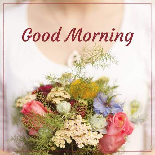 lovely good morning wishes with flowers good morning flower message