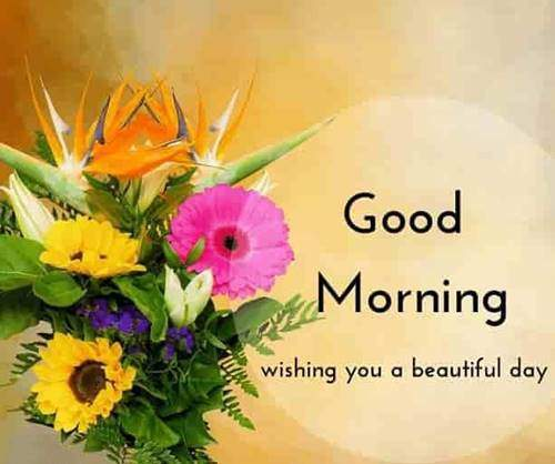 lovely good morning wishes with flowers good morning quotes for best friend