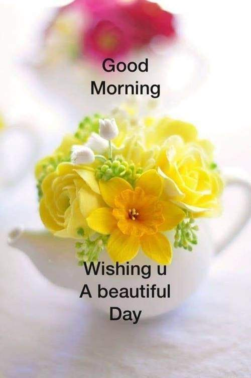 lovely good morning wishes with flowers good morning quotes text