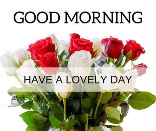 lovely good morning wishes with flowers lovers wishes