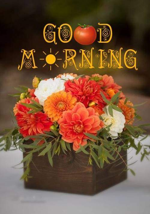 lovely good morning wishes with flowers quotes for bf