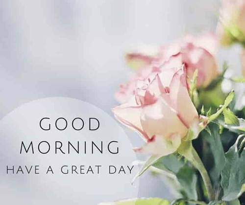 lovely good morning wishes with flowers quotes gif