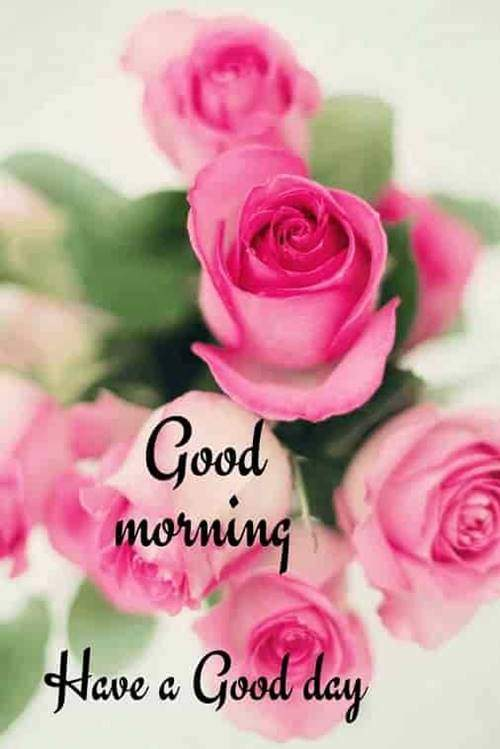lovely good morning wishes with flowers quotes in hindi