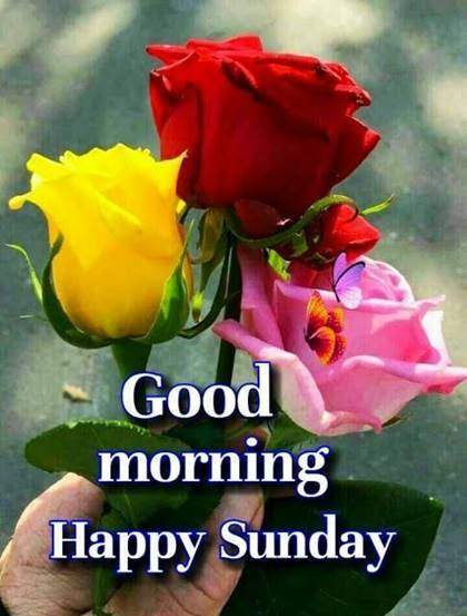 good morning happy sunday wishes with images