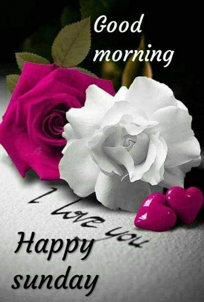 good morning sunday wishes with images Have A Sweet Day Good Morning