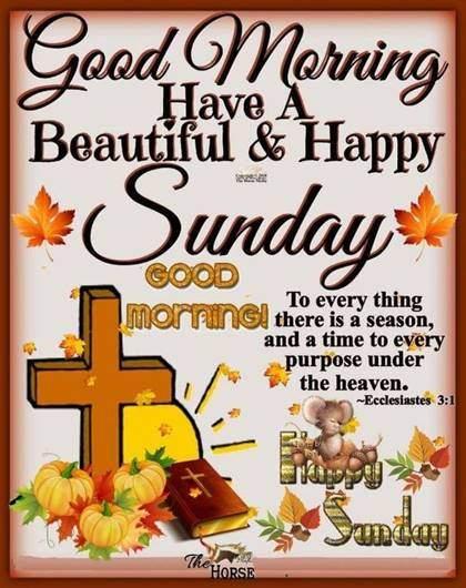 Good Morning Hope Everyone Has A Beautiful Sunday