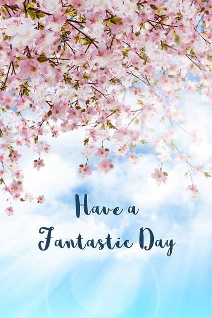 Good Morning Friends Wishing You An Amazing Sunday Pic