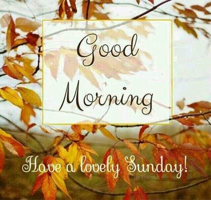 Good Morning Bringing You Some Sunday Love