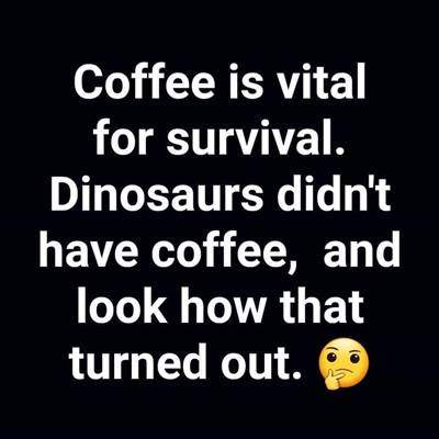 40 Funny good morning coffee quotes with images 21