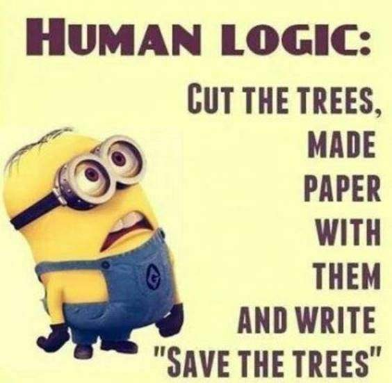 42 Best Funny Jokes Minions Quotes With Images 1