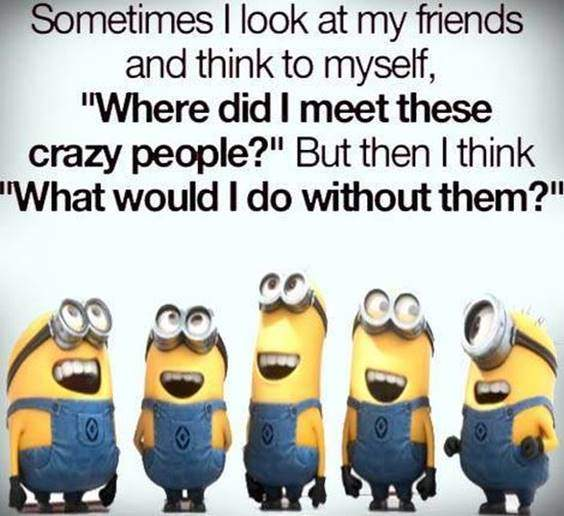 42 Best Funny Jokes Minions Quotes With Images 31