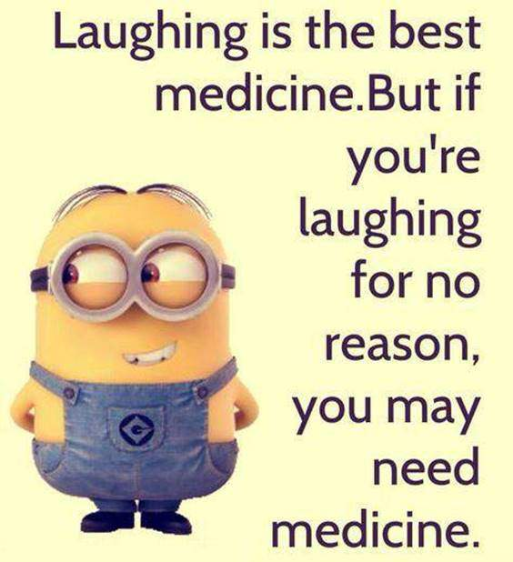 42 Best Funny Jokes Minions Quotes With Images 38