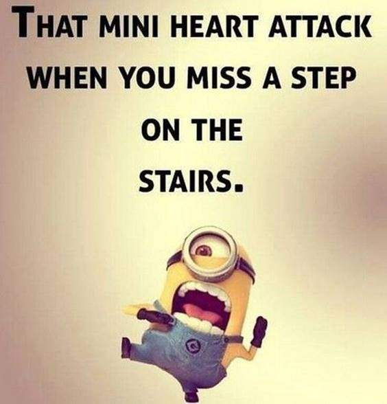 42 Best Funny Jokes Minions Quotes With Images 39