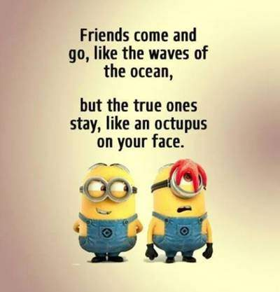 60 Best Crazy hilarious quotes about friends blessed with friends and family quotes