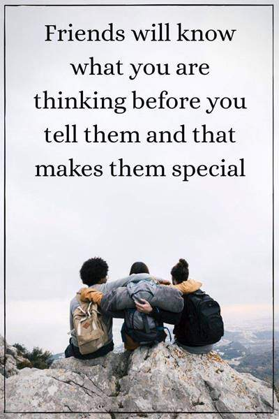 60 Best Crazy Funny Friendship Quotes Images 6