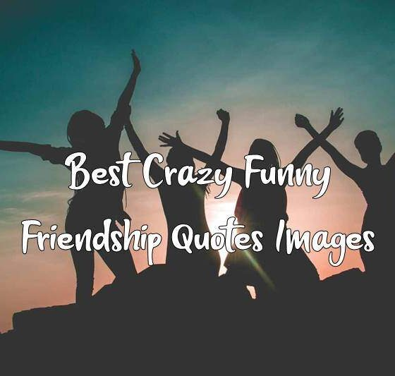 Best Crazy Funny Friendship Quotes Images