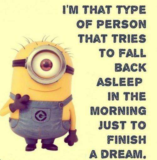 35 Fun Minion Quotes Of The Week 1