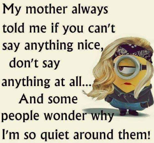35 Fun Minion Quotes Of The Week 16