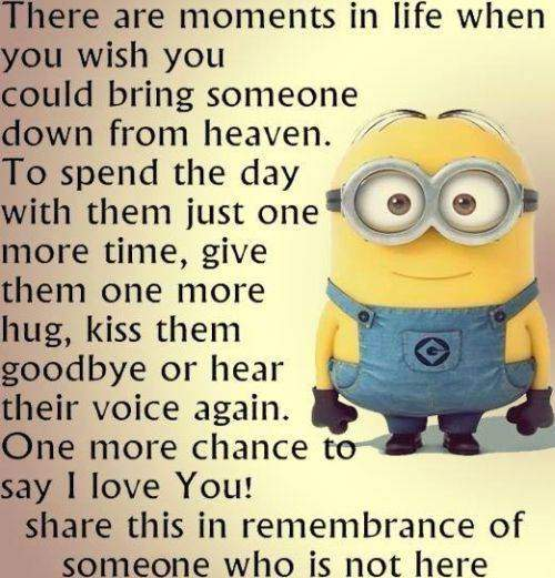35 Fun Minion Quotes Of The Week 20
