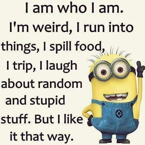 35 Fun Minion Quotes Of The Week 22