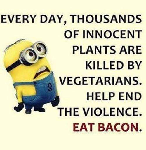 35 Fun Minion Quotes Of The Week 3