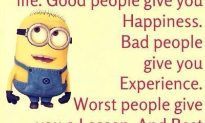 35 Fun Minion Quotes Of The Week 4