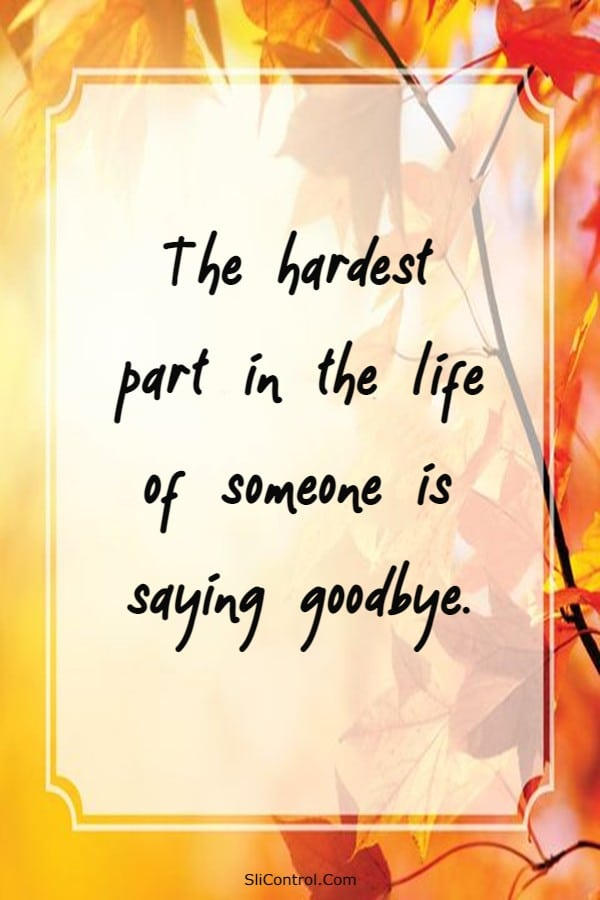 70 Goodbye Messages for Saying Goodbye to Friends | Farewell quotes for friend, Goodbye wishes for friend, Farewell Quotes About Friends Moving Away