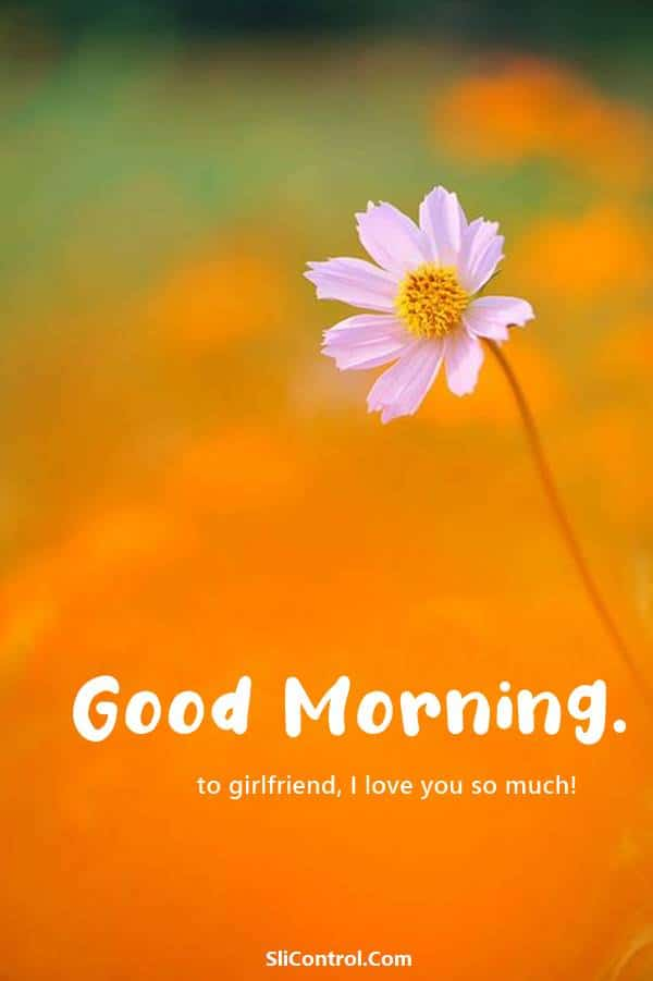80 Romantic Good Morning Messages for Her | good morning message for love, good morning messages for girlfriend, good morning love sms