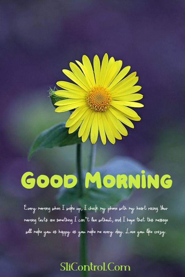 80 Romantic Good Morning Messages for Him | good day wishes for him, good message for him, have a great day handsome