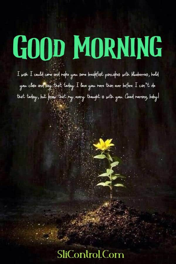 80 Romantic Good Morning Messages for Him | have a nice day messages for him, i love you have a good day, good morning love to him