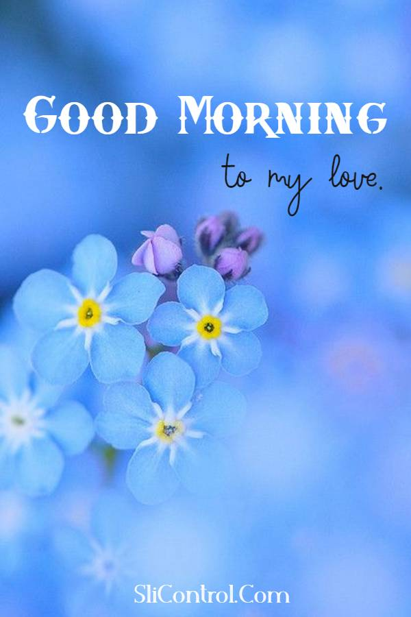 80 Romantic Good Morning Messages for Him | good morning love messages for boyfriend, good morning messages for him, good morning wishes for him