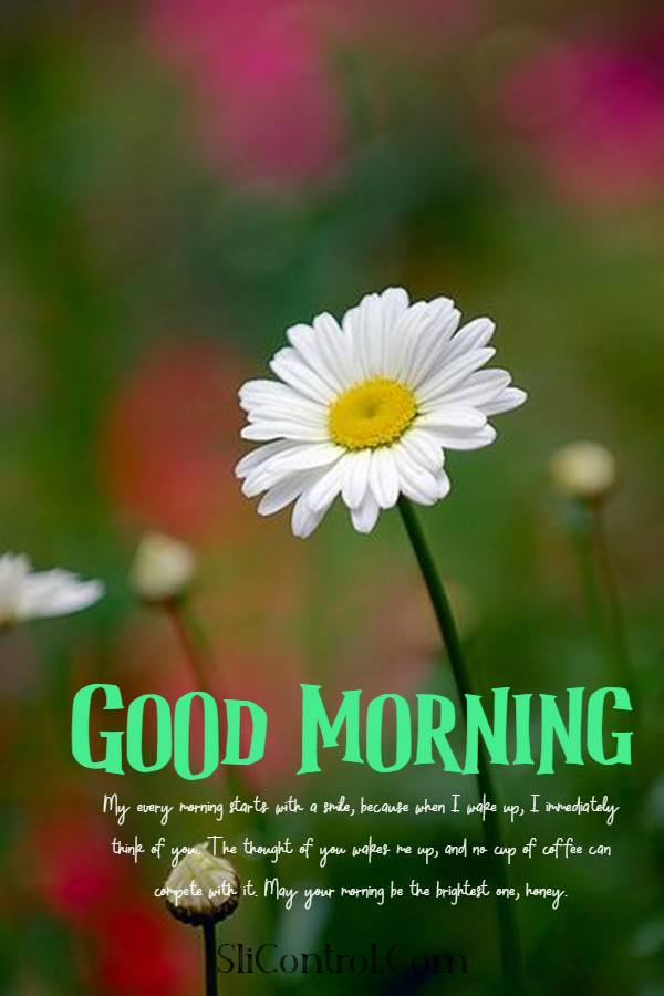 80 Romantic Good Morning Messages for Him | good morning honey, good morning sms for him, good morning to the man of my dreams