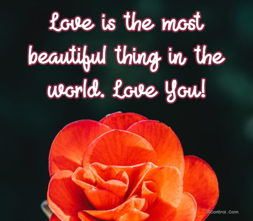 Sweet Romantic Words for Him