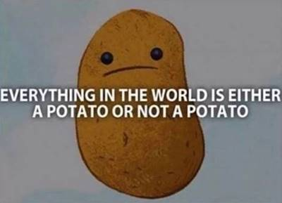 """42 Funny Potato Memes """"Everything in the world is either a potato or not a patato."""""""