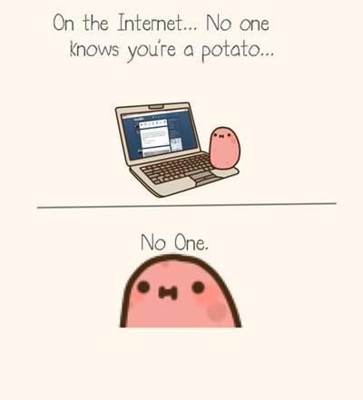 """42 Funny Potato Memes """"on the internet... No one knows you're a potato. No one, """""""