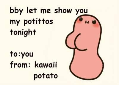 """42 Funny Potato Memes """"You are simply the best. bby let me show you my potittos to night to you from kawaii potato."""""""