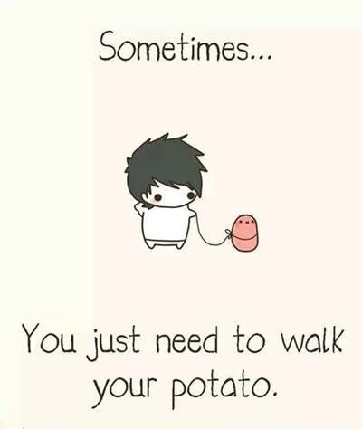 "42 Funny Potato Memes ""Sometimes... You just need to walk you patato."""