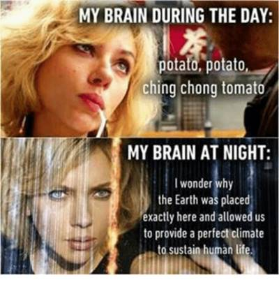"""42 Funny Potato Memes """"My brain during the day: Potato, potato ching chong tomato. my brain at night: i wonder why the earth was pleased exactly here and allowed us to provide a perfect climate to sustain human life."""""""