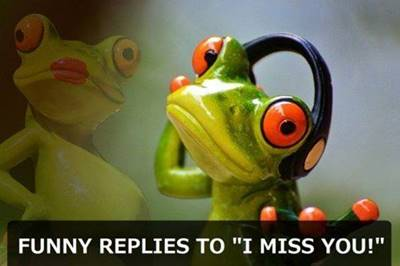 """45 Best I Miss You Memes """"Funny replies to """"I miss you!"""""""""""