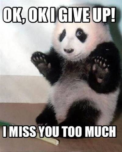 """45 Best I Miss You Memes - Funny Memes for Love """"Ok, ok I give up! I miss you too much."""""""