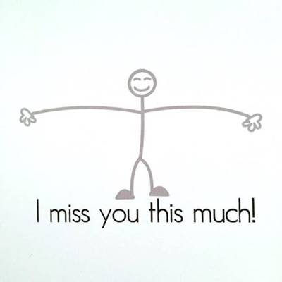 """45 Best I Miss You Memes - Funny Memes for Love """"I miss you this much!"""""""