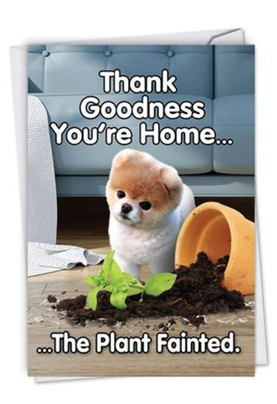 """45 Cute I Miss You Memes """"Thank goodness you're home... The plant fainted."""""""