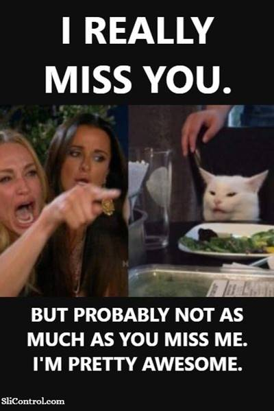 """45 Best I Miss You Memes """"I really miss you. But probably not as much as you miss me. I'm pretty awesome."""""""